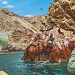 Ballestas Islands Boat Tour